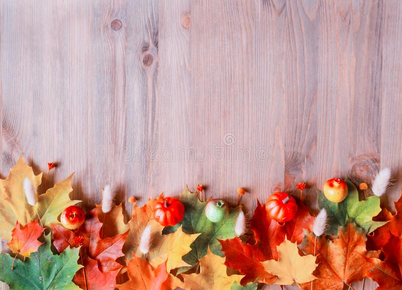 Fall background. Maple varicolored fall leaves on the wooden background stock images