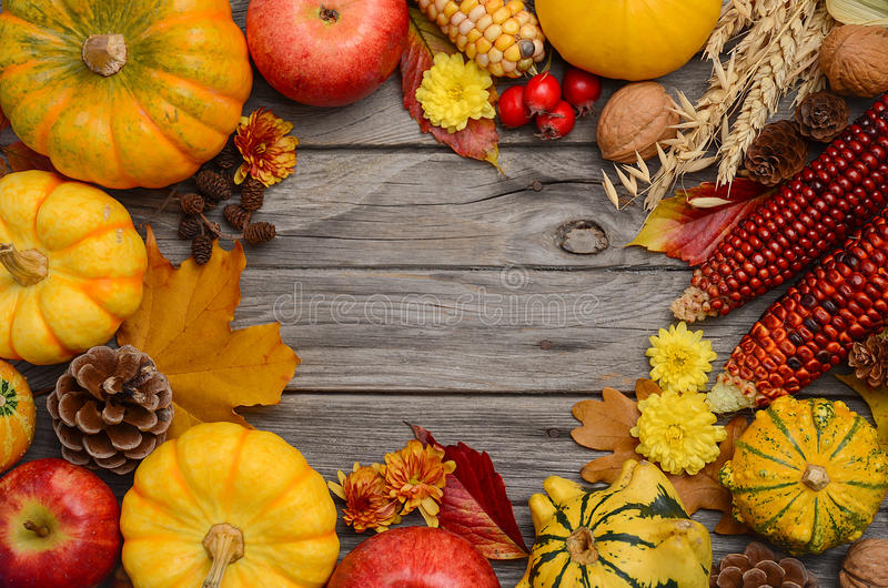 Fall background with pumpkins royalty free stock photo