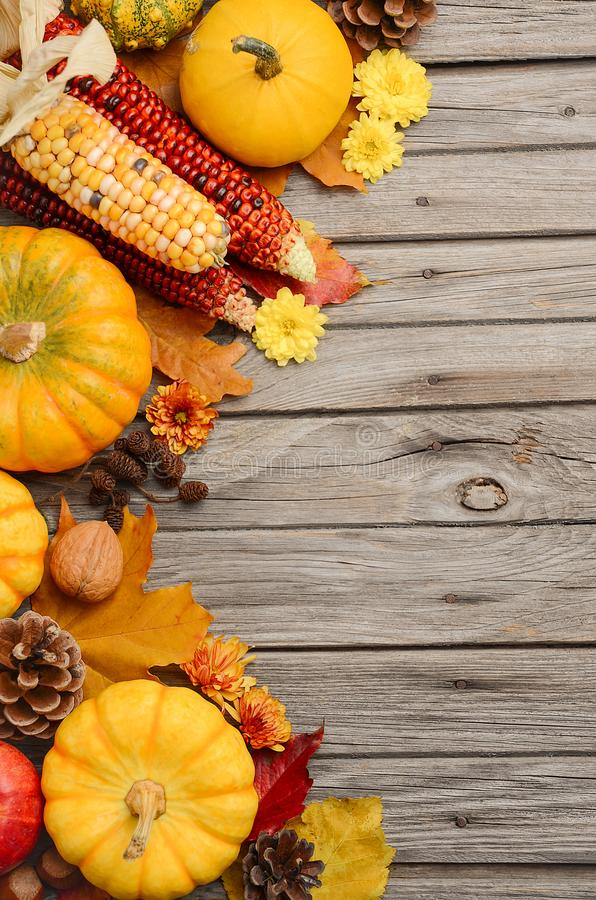 Fall background with pumpkins royalty free stock photos