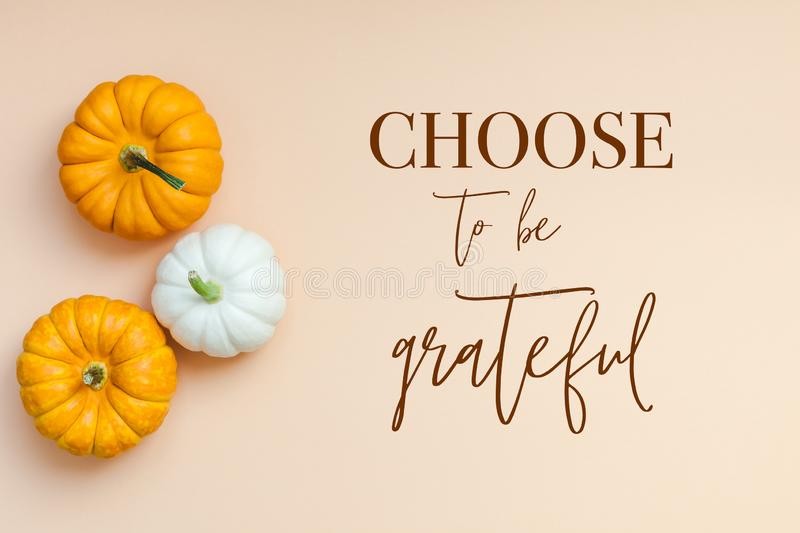 Fall background with small pumpkins. Creative Top view flat lay autumn composition. Frame concept pumpkins color paper background copy space. Template fall vector illustration