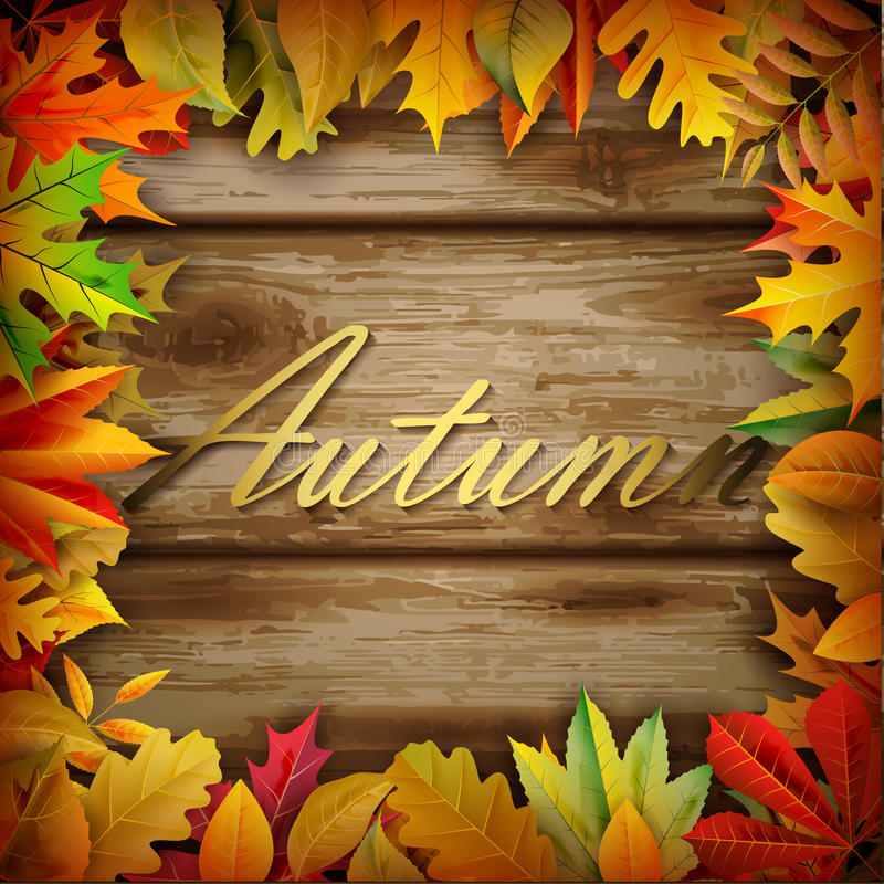 Fall background. For your design stock illustration