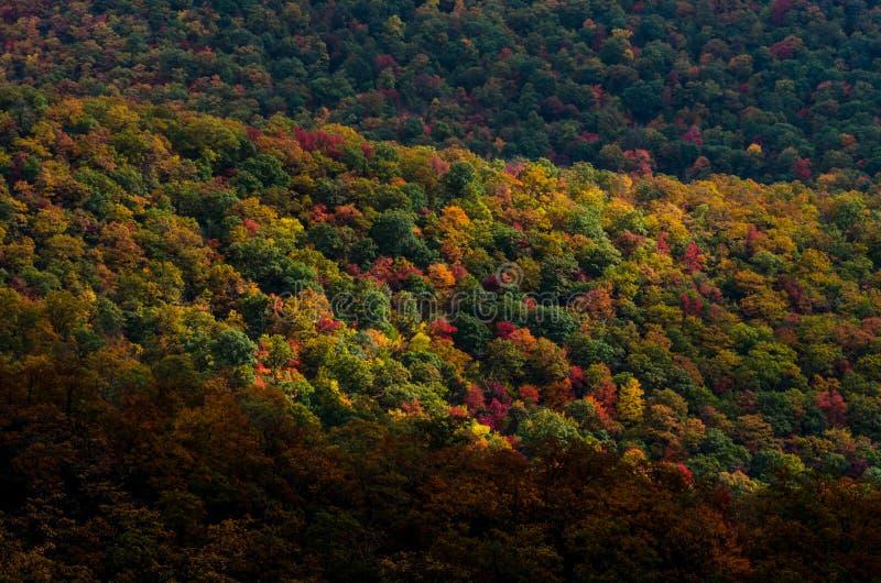 Fall bedeckt blauen Ridge Mountains stockfoto