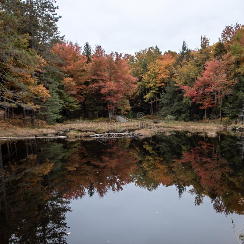 Fall in the Berkshires stock images