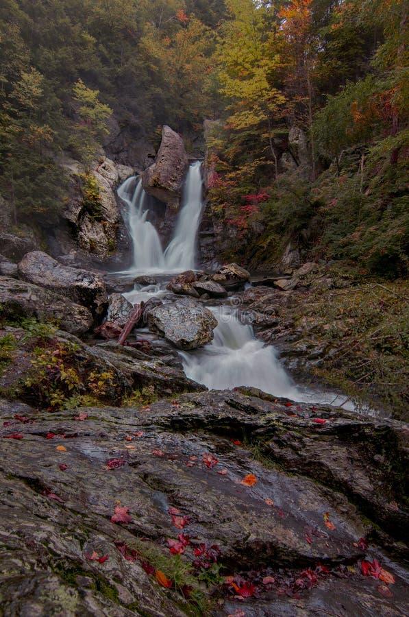 Fall in Bish-Nationalpark des heftigen Schlags - Porträt lizenzfreie stockfotografie