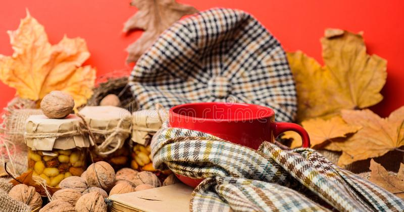 Fall bucket list concept. Mug cozy aromatic tea beverage in scarf and treats. Mug of tea surrounded by scarf red stock photos