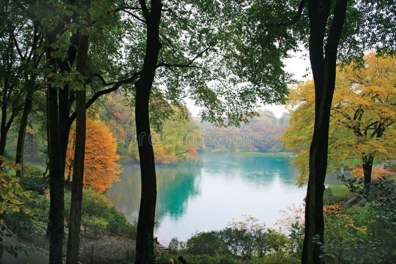 Fall in Central Park New York lizenzfreies stockbild