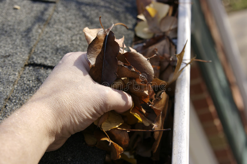 Fall Cleanup - Leaves in Gutter royalty free stock image