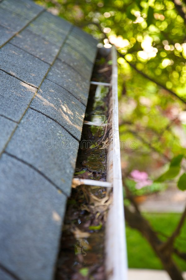 Download Fall Cleanup - Leaves In Gutter Stock Image - Image of crammed, grey: 5299877