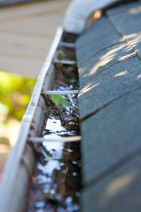 Download Fall Cleanup - Leaves In Gutter Stock Image - Image: 5299893
