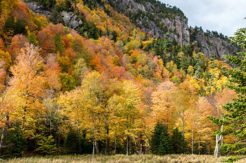 Fall color in Lake Placid NY. Fall color in the Adirondack Mountains around Lake Placid NY stock images