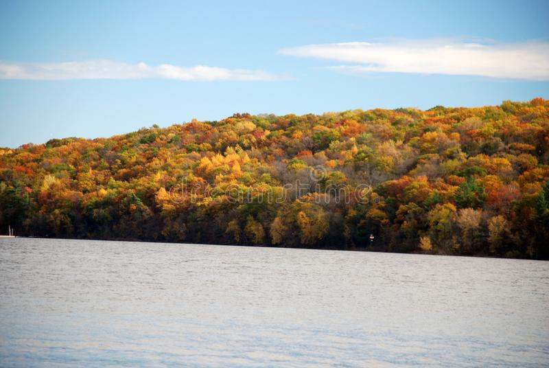 Fall color on the river royalty free stock image