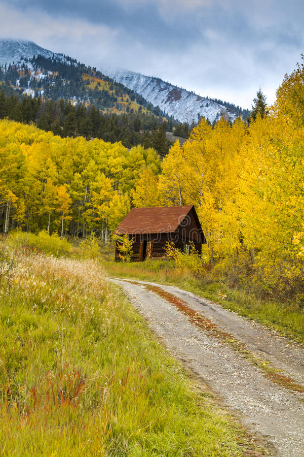 Fall Color and Snow in Colorado stock image