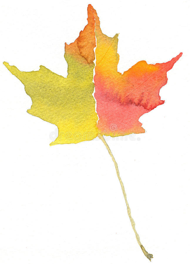 Fall Colors. My watercolor painting of an Autumn leaf. Bright fall colors stock illustration