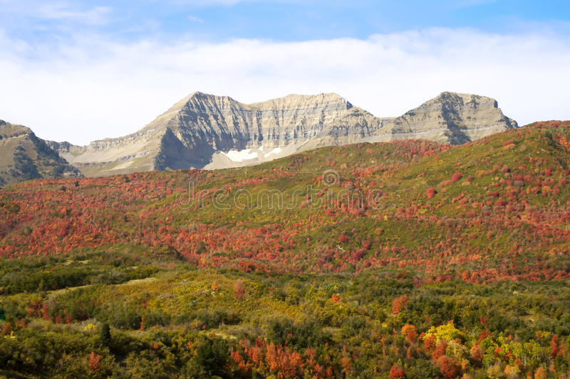 Download Fall colors stock photo. Image of fall, mountains, seasons - 11207392