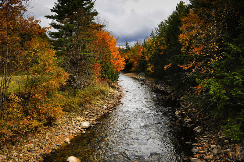 Download Fall Colors stock image. Image of vermont, orange, autumn - 11727939