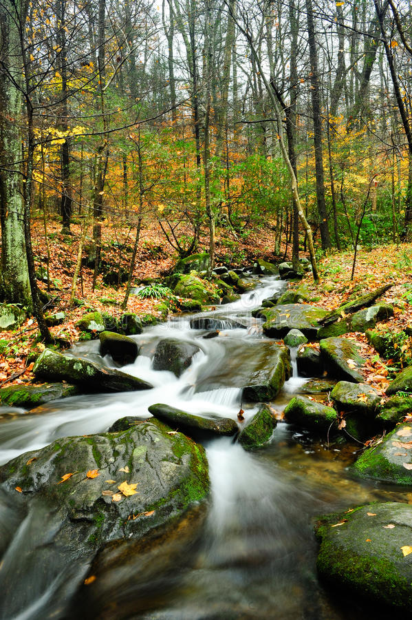 Download Fall Colors stock image. Image of small, mountain, mountains - 16198585