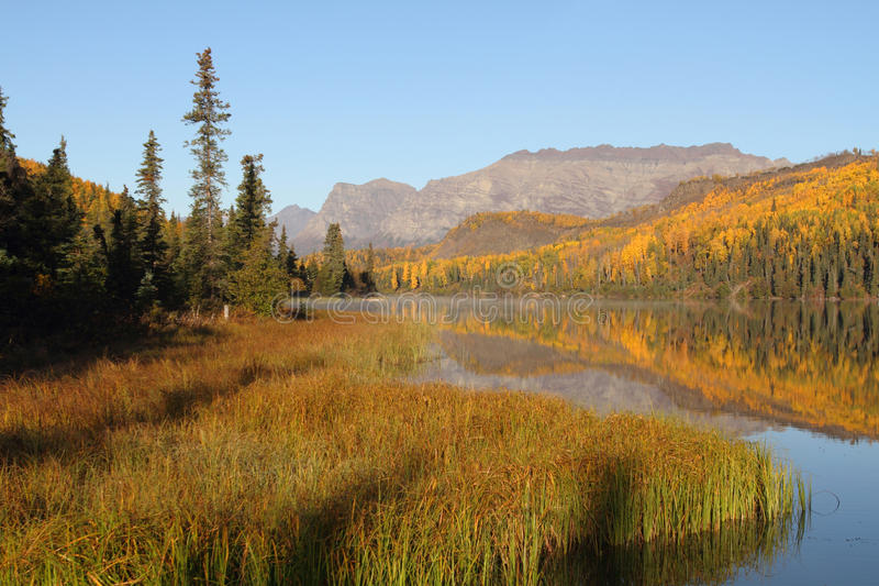 Download Fall Colors stock image. Image of mountains, alpine, nature - 22632975