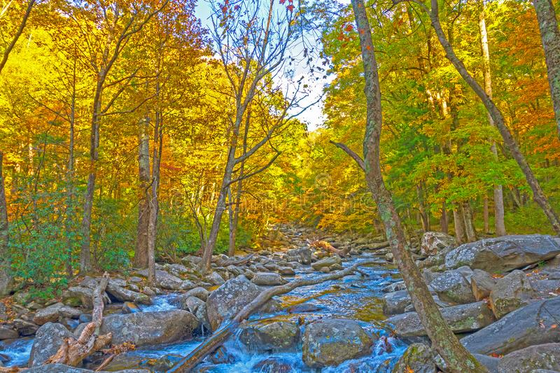 Fall Colors above a Secluded Mountain Stream stock photos