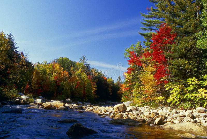 Download Fall Colors Along The River Stock Images - Image: 11738604