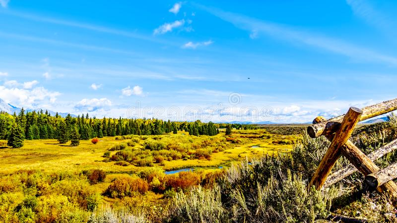 Fall colors along the Snake River in Grand Tetons National Park. Viewed from Black Ponds Overlook stock photos