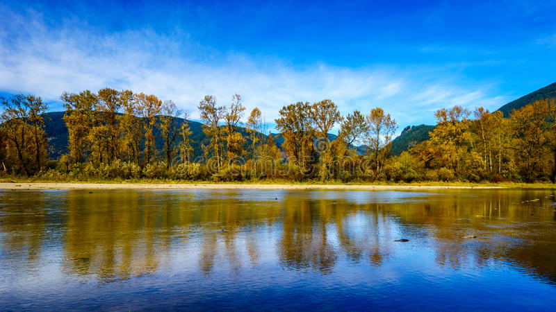Fall Colors around Nicomen Slough, a branch of the Fraser River, as it flows through the Fraser Valley. Of British Columbia, Canada royalty free stock photos