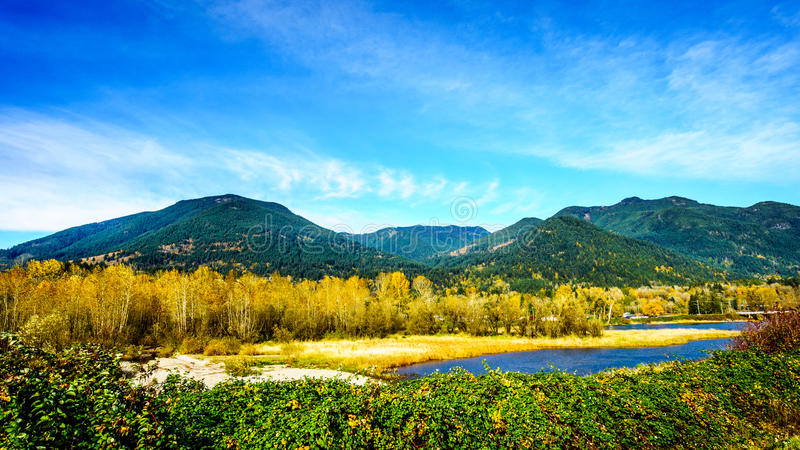 Fall Colors around Nicomen Slough, a branch of the Fraser River, as it flows through the Fraser Valley. Of British Columbia, Canada stock photo