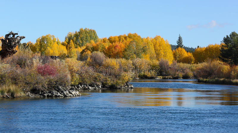 Fall Colors of Bend, Oregon stock image