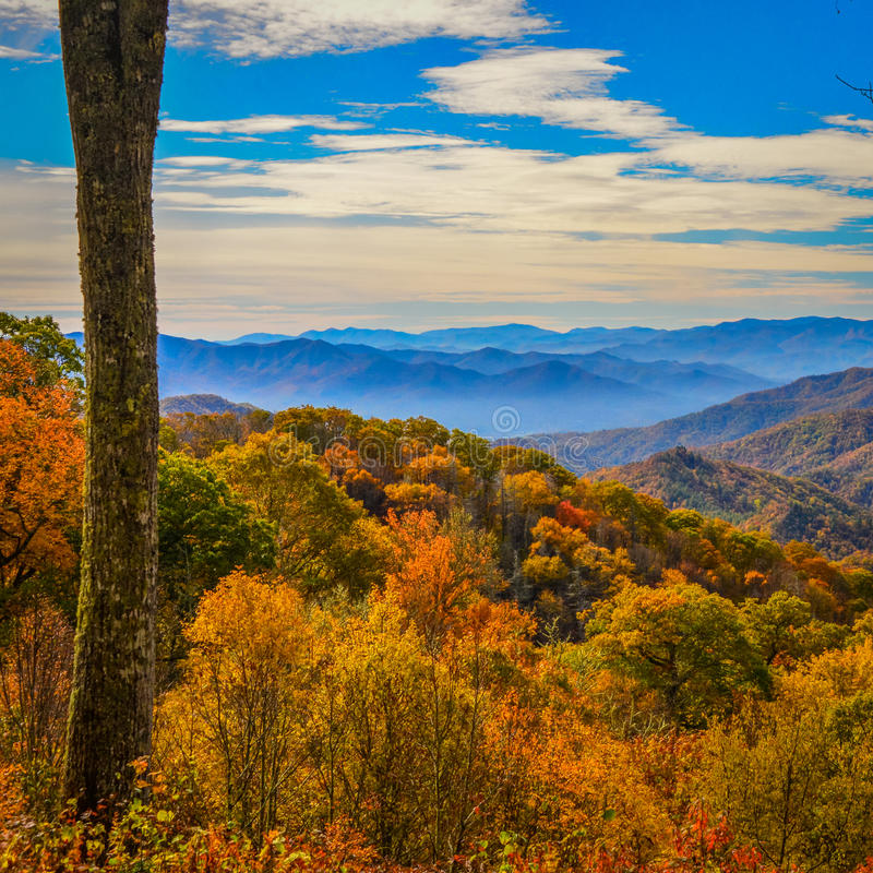 Fall colors of the Blue Ridge Parkway. Fall is a great time to take a ride along the Blue Ridge Parkway and see why the Appalachian Highlands are named this from royalty free stock image