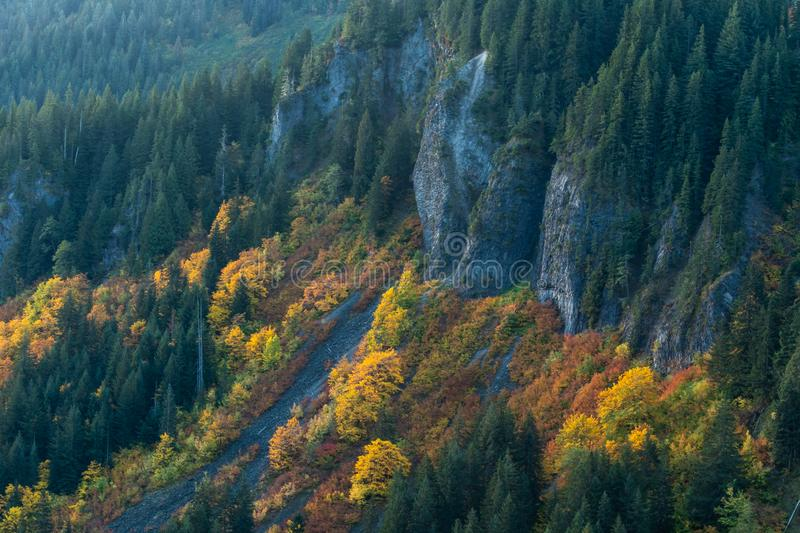 Fall Colors in Brush Along Granite Cliff royalty free stock photos