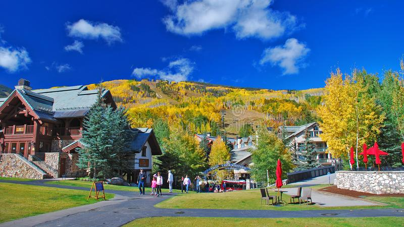 Fall colors in the Colorado mountains royalty free stock photo