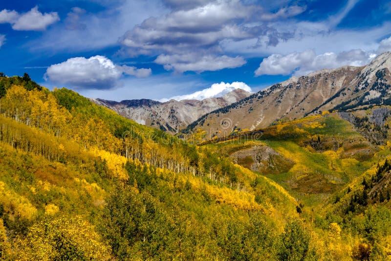 Fall Colors in Colorado Mountains stock photos