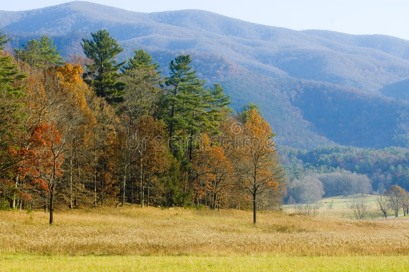 Fall colors and hazy mountain royalty free stock photo