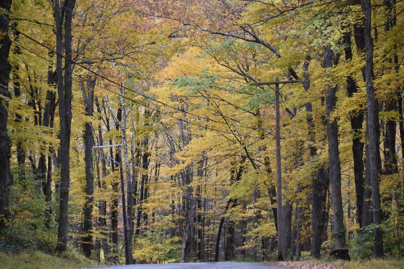 Fall Colors in Kent, Connecticut. USA royalty free stock image