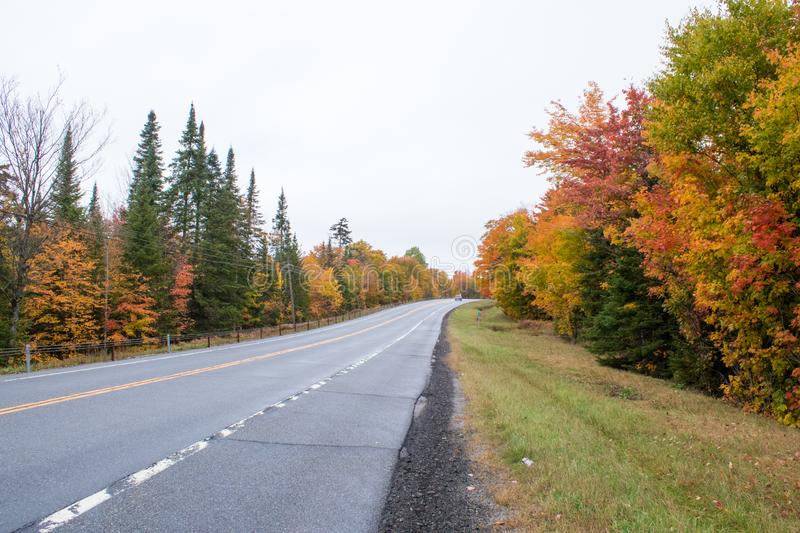 Fall colors in North America royalty free stock photos