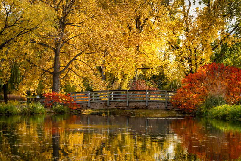 Fall Colors in Outdoor Park stock photos