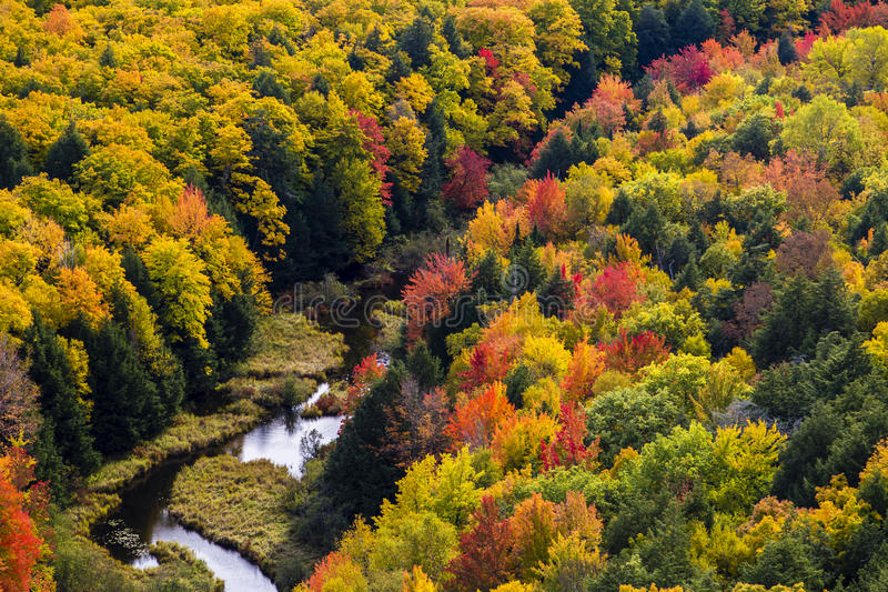 Fall colors at Porcupine Mountains stock photo
