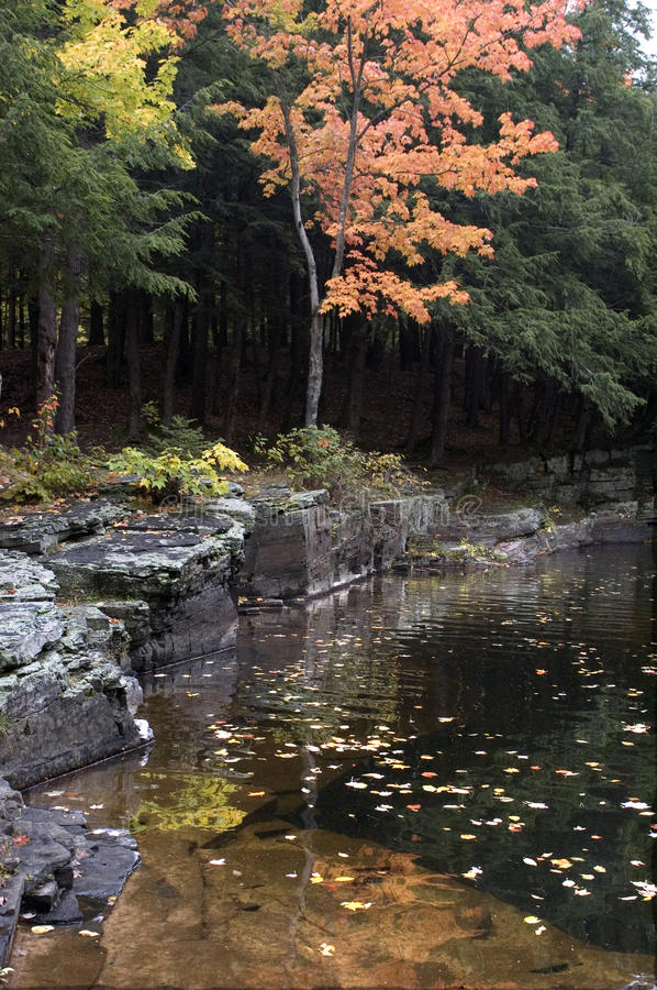 Download Fall Colors By Quiet Stream Stock Image - Image: 12156933