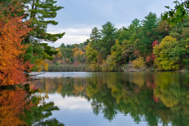 Fall colors reflected in lake. Vibrant fall colors reflected in calm lake stock photo
