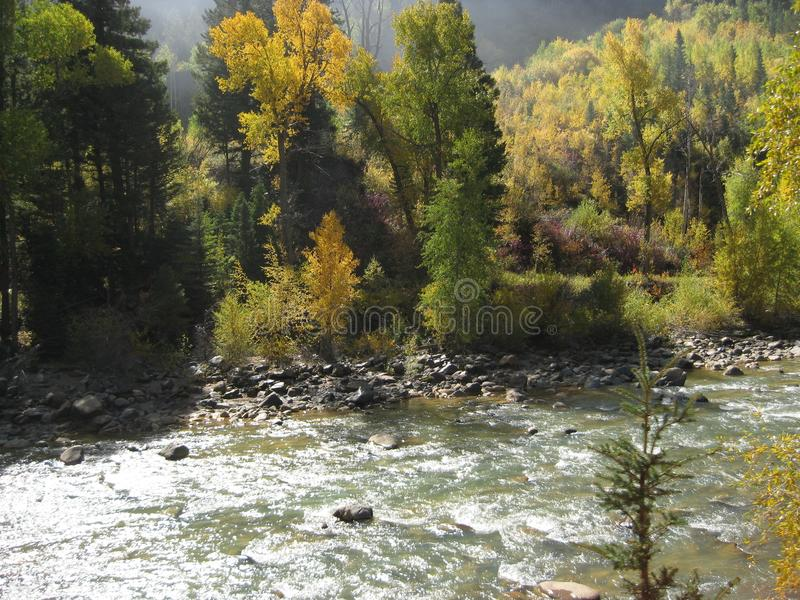 Fall Colors along roaring stream stock images