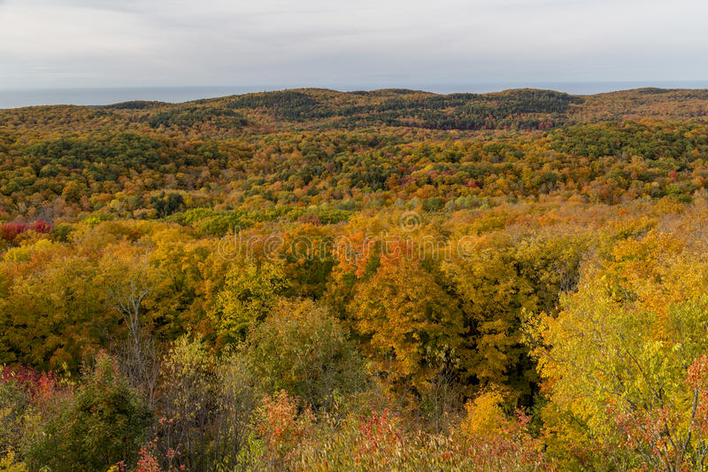 Fall colors at Summit Peak in Porcupine Mountains royalty free stock image