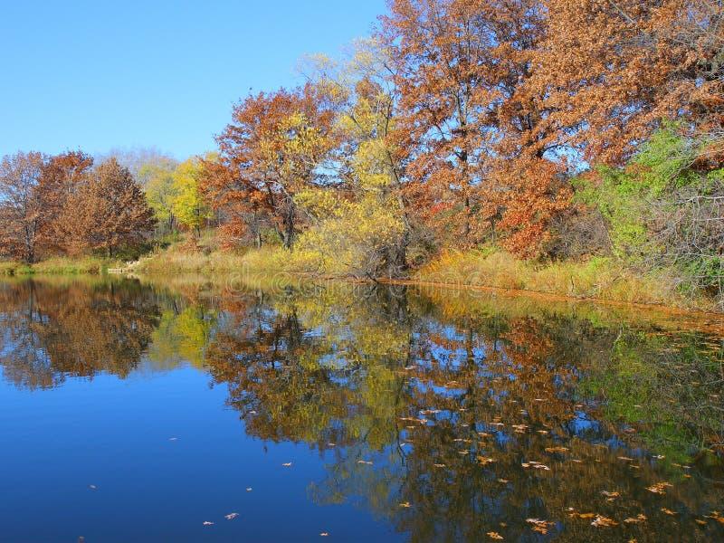 Download Fall Colors On Thomas Lake, MN Stock Image - Image: 3519827