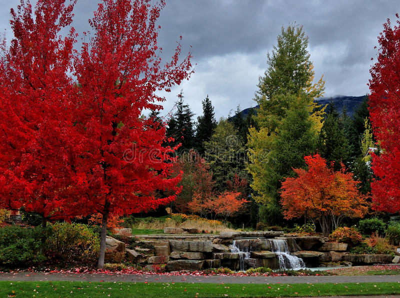 Fall colors in town stock photos