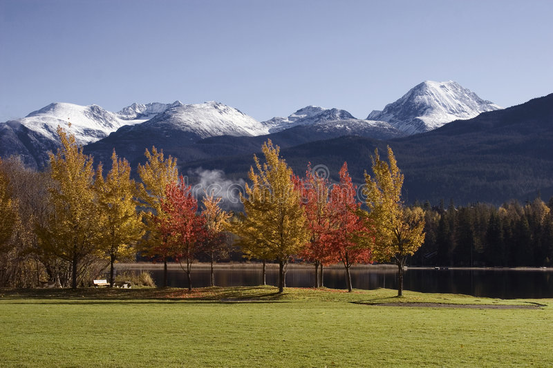 Fall Colors in Whistler's Rainbow Park stock image