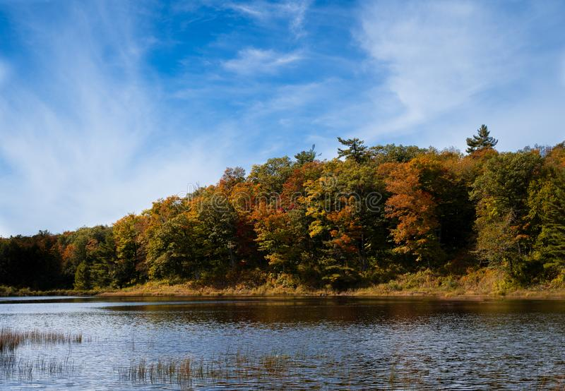 Fall colour on lake Bourgeois, in Gatineau Park, near Ottawa, Canada. Lake has small waves due to wind, and lots of stock images