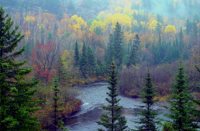 Download Fall colour view stock image. Image of fall, water, evergreens - 506787