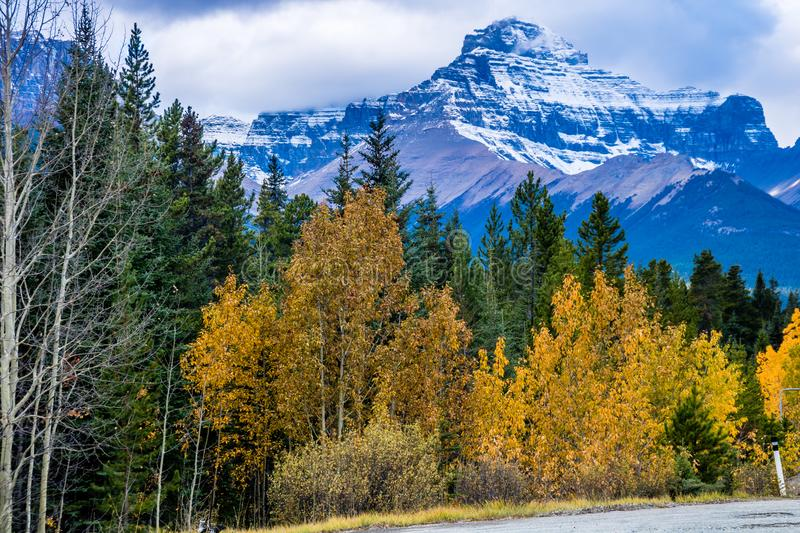 Taken from along the Ice Fields Parkwayl Banff National Park, Alberta, Canada stock photo
