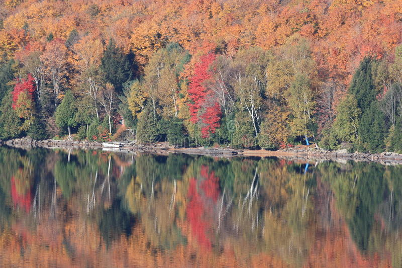 Fall Colours Reflecting Over Calm Lake In Ontario Stock Images