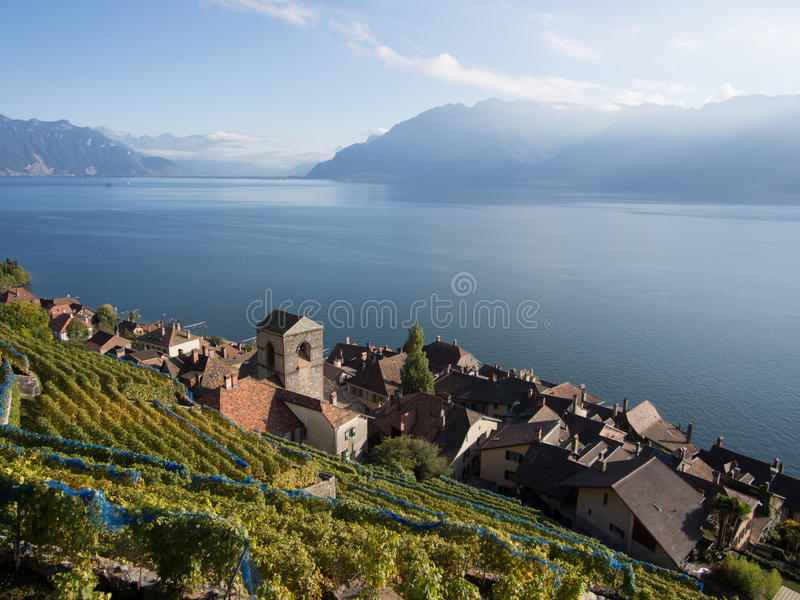 Fall Colours at Saint-Saphorin. The northen hillside of Lake Geneva (Lake Leman), Switzerland, between Lausanne and Montreux is covered in scenic vineyards, all stock image