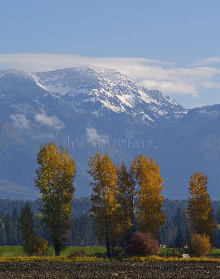 Download Fall Comes to the Flathead stock photo. Image of foilage - 1411388