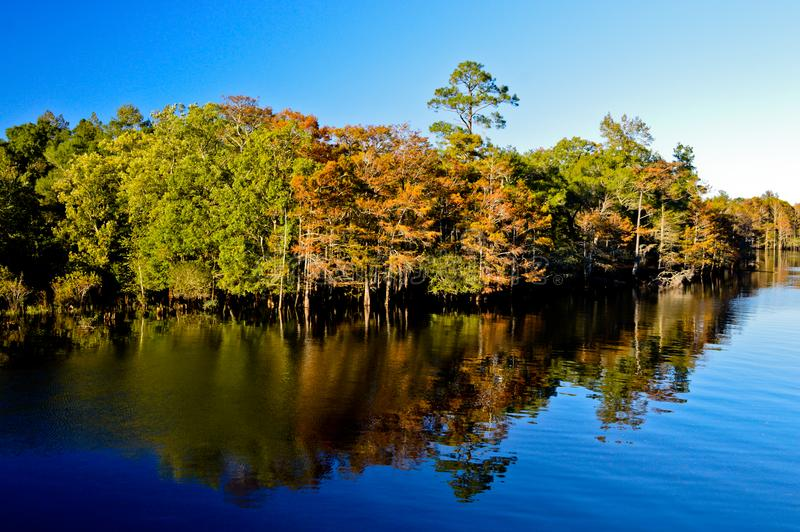 Fall is coming to the Carolinas. Blue river water with blue sky above. Forest of greens, orange browns reflect of the water royalty free stock photography